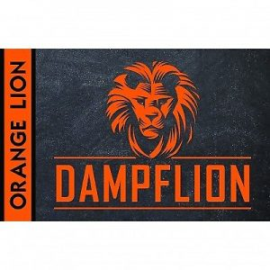 Dampflion Orange Lion