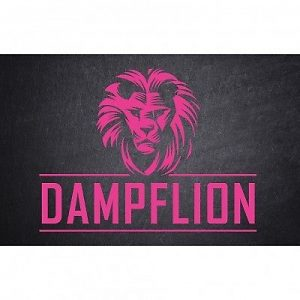 Dampflion Pink Lion